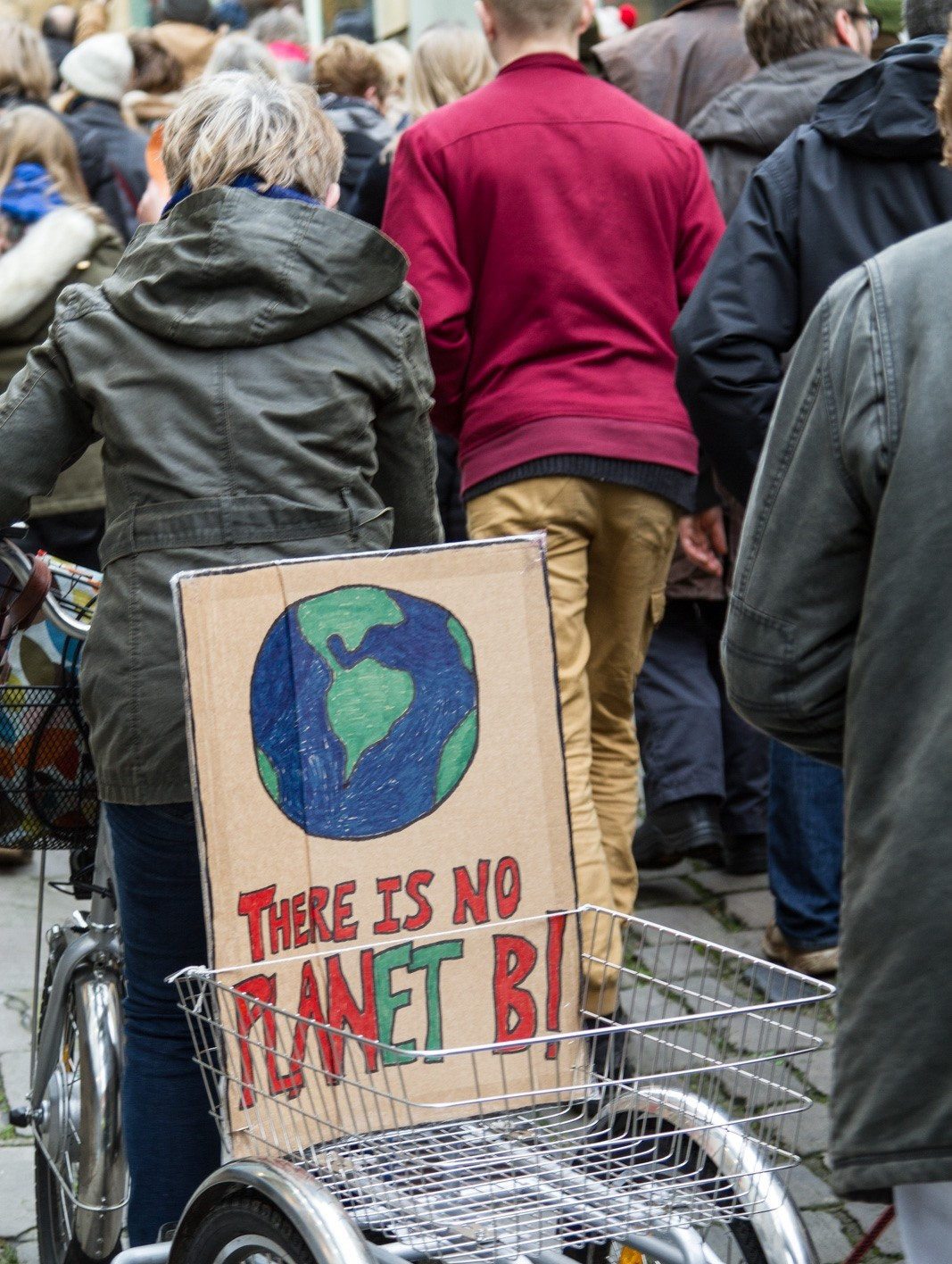 Climate March Frome